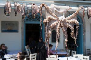 Octopus at fish tavern inside Vouliagmeni Lake